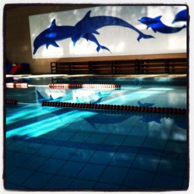 Και πισίνα! ´Οτι πρέπει το καλοκαίρι! Ή μετά από μια προπόνηση,χωρίς να το ξέρουν τα αφεντικά όμως μουαχαχαχα